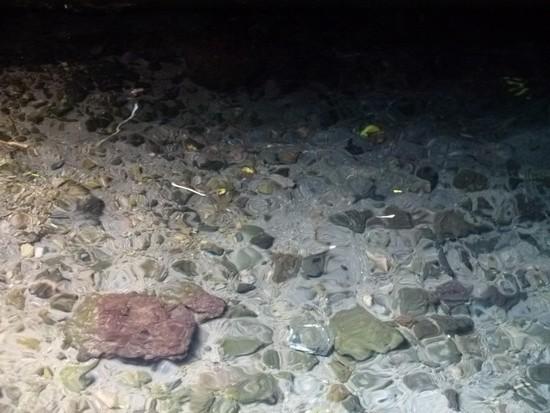 Detalhe da água dentro da caverna
