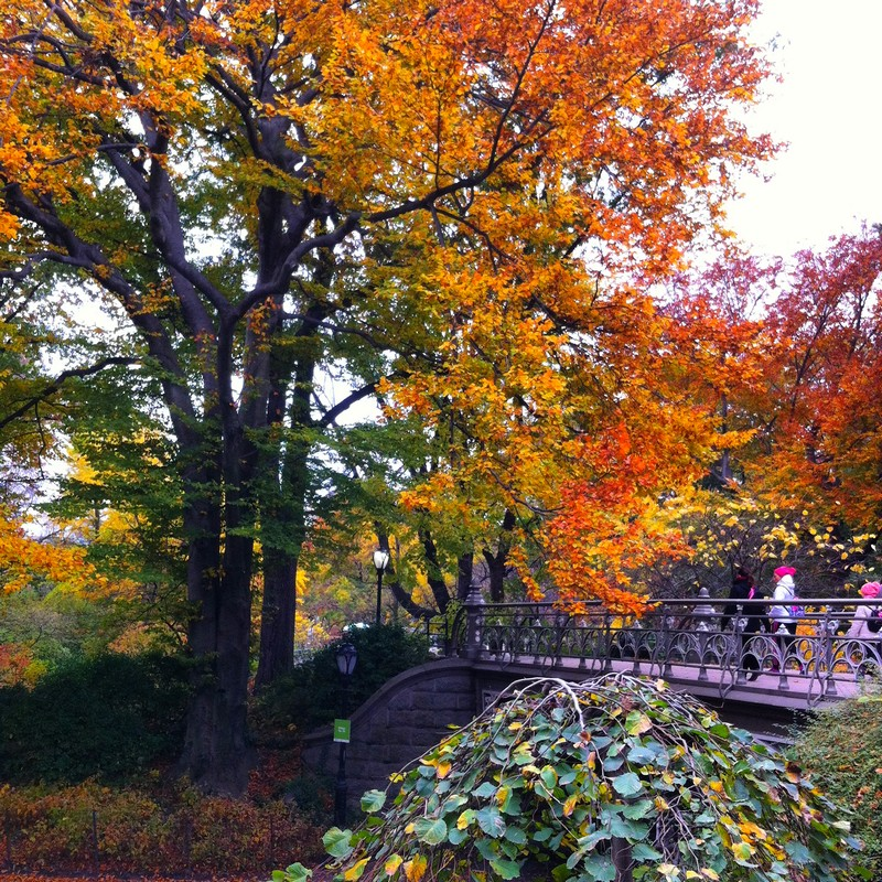 Outono em Nova York