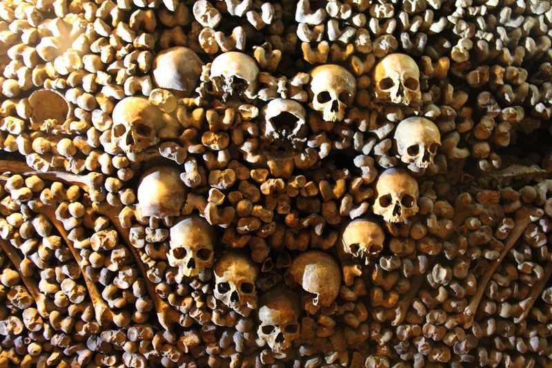 ossos catacumbas de paris